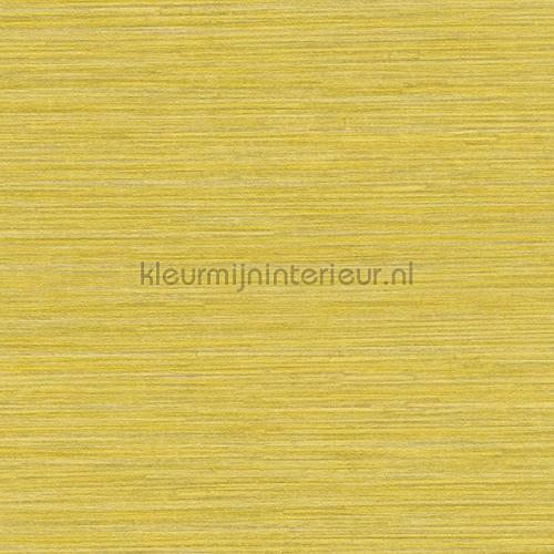Plain horizontal maisgeel