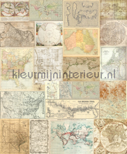 Old maps photomural Room Seven world maps