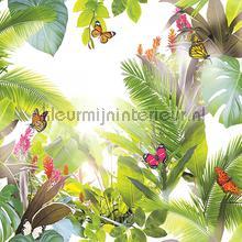 Amazonia Citrus behang Arthouse Exotisch
