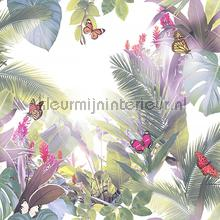Amazonia Teal Pink carta da parati Arthouse Tropics 690301