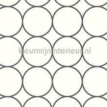 Contour cirkels papel pintado Arte Ulf Moritz Geometric 16422