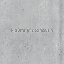 Concrete Stripe papel de parede Hookedonwalls urbana