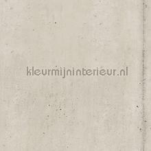Concrete Stripe papel pintado Hookedonwalls rayas