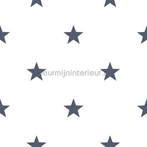 behang 3245 sterren Noordwand