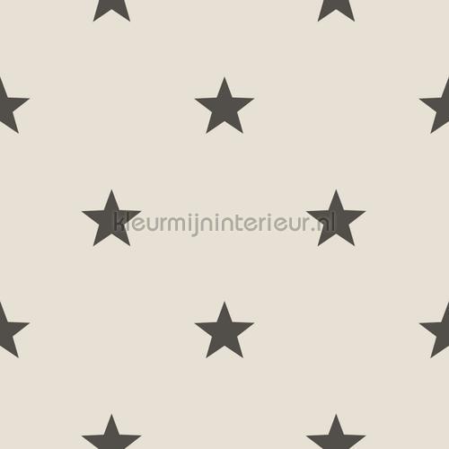 behang 5644 sterren Noordwand