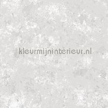 85766 behang Noordwand jongens