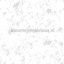 85767 behang Noordwand jongens