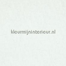 49607 papier peint BN Wallcoverings Van Gogh 17117