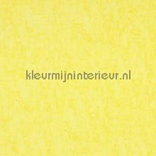 49619 papier peint BN Wallcoverings Van Gogh 17131