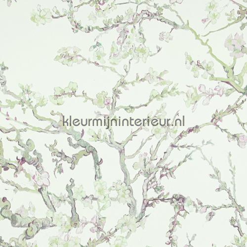 Almond Blossom light behang 17142 romantisch BN Wallcoverings