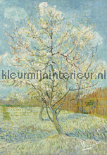 De Roze Perzikboom fotomurali BN Wallcoverings Van Gogh 30541