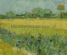 Veld met irissen bij Arles fotomurali BN Wallcoverings Van Gogh 30543