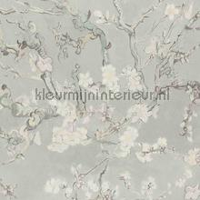 Almond Blossom light grey papier peint BN Wallcoverings Van Gogh II 220060