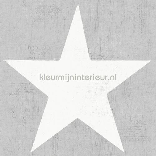 Grote witte vintage ster behang 17325 sterren Dutch Wallcoverings