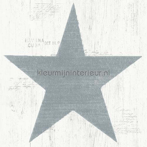 Grote grijze vintage ster behang 17326 sterren Dutch Wallcoverings