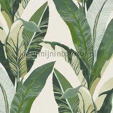 Bananenbladeren carta da parati Eijffinger Vivid 384500