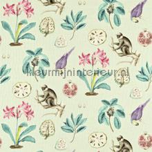 Capuchins cortinas Sanderson quadrado