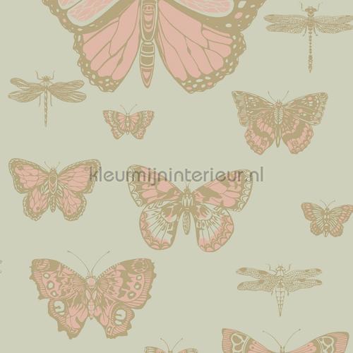 Butterflies & Dragonflies papel de parede 103-15063 raparigas Cole and Son