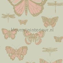 Butterflies & Dragonflies wallcovering Cole and Son Wallpaper creations