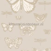 Butterflies & Dragonflies papier peint Cole and Son spécial