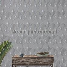 ferro wallcovering Khroma Wild wil501