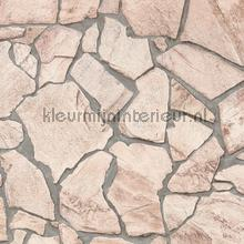 Flagstones beige tapeten AS Creation Best of Wood and Stone 9273-23