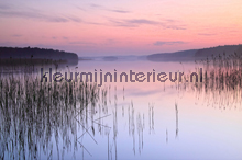 Lake Calm fotomurali AS Creation XXL Wallpaper 2 470-313