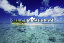 South Sea Island fotomurali AS Creation XXL Wallpaper 2 470-330