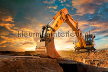 Yellow Digger fotomurali AS Creation XXL Wallpaper 2 470-348