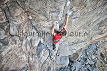 Cliffhanger fotomurali AS Creation XXL Wallpaper 2 470-351
