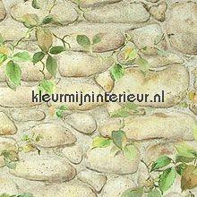 oude muur met klimop tapeten AS Creation Dekora Natur 6 8344-16