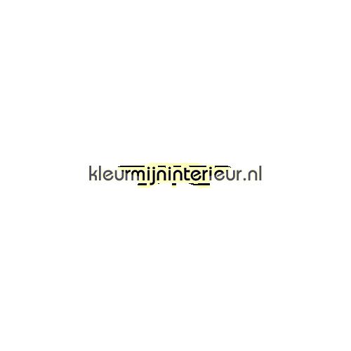 Vliegtuig interieurstickers LaLien jongens