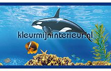 Sea life rand stickers mureaux Dutch Wallcoverings Voitures Transport