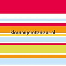 Color stripes behang behang