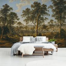 Landscape with trees fototapet Kleurmijninterieur verdenskort