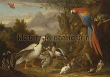 A Macaw, Ducks, Parrots and Other Birds in a Lands fototapet Kleurmijninterieur stemning