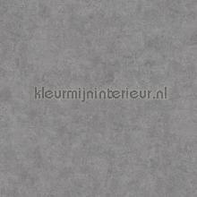 Gewolkte semi uni grijs papel pintado Kleurmijninterieur rayas