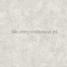 Gewolkte semi uni papel pintado Kleurmijninterieur rayas