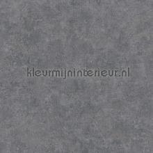 gewolkte semi uni grijs tapet Kleurmijninterieur All-images
