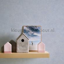 Kmi829 papier peint Kleurmijninterieur papier peint Top 15