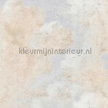 cloudy skys craquele tapet Kleurmijninterieur All-images