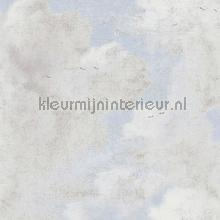 cloudy skys craquele frisblauw tapet Kleurmijninterieur All-images