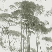 Italian landscape trees tapet Kleurmijninterieur alle billeder