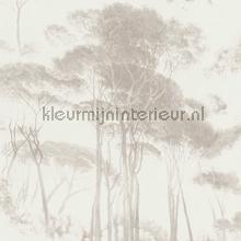 Italian landscape trees tapet Kleurmijninterieur All-images