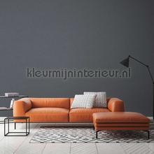 Kmi859 papier peint Kleurmijninterieur papier peint Top 15