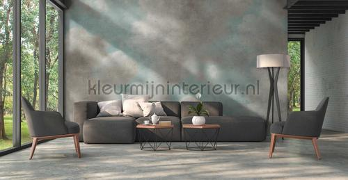 Cloudy art sky fotomurales DD118817 ambiente Kleurmijninterieur