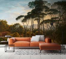 Italian landscape papier murales Kleurmijninterieur tout images