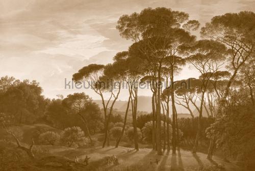 Italian landscape sepia bruin fotomurales DD118819 ambiente Kleurmijninterieur