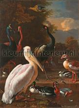 The floating feather papier murales Kleurmijninterieur tout images