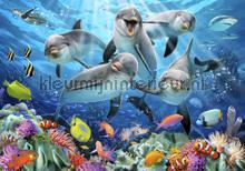 Dolphins under water fotomurali Kleurmijninterieur sport